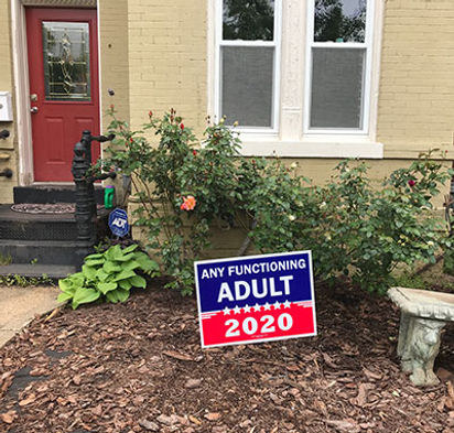 election-sign-crop.jpg