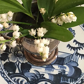 lily-of-the-valleyb.jpg