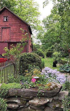 garden-june.jpg