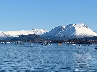 Norway harbour.jpg