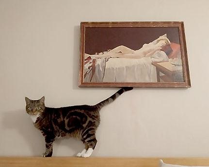 vain-pussy-cat.jpg