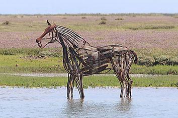 lifeboat-horse.jpg