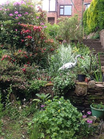 steep-garden.jpg