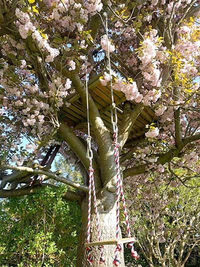 tree-swing.jpg