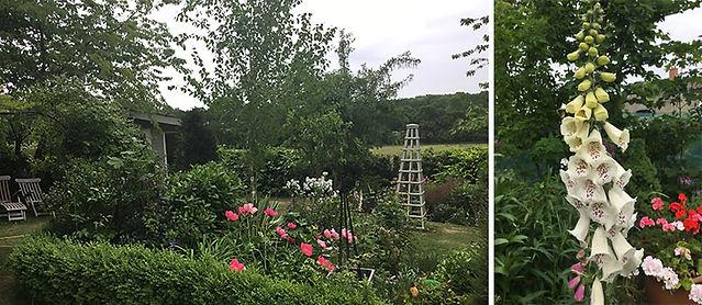 garden-comp.jpg