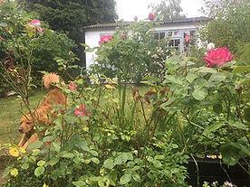 garden-earnie.jpg