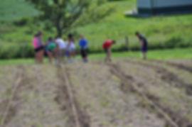Iowa gardening for Good youth volunteer planting opportunites