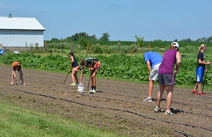 Iowa gardening for good planting