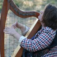 BS harpe.jpg