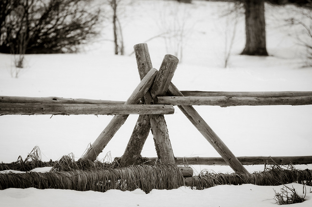 Fence-148