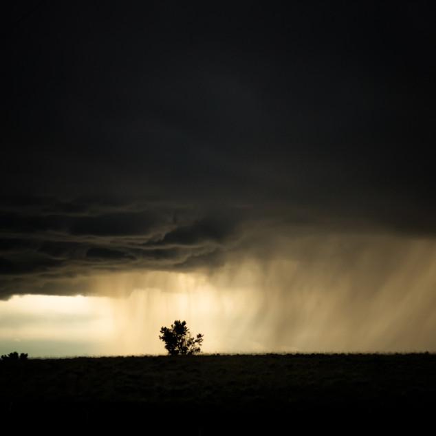 Shepard, MT Storm