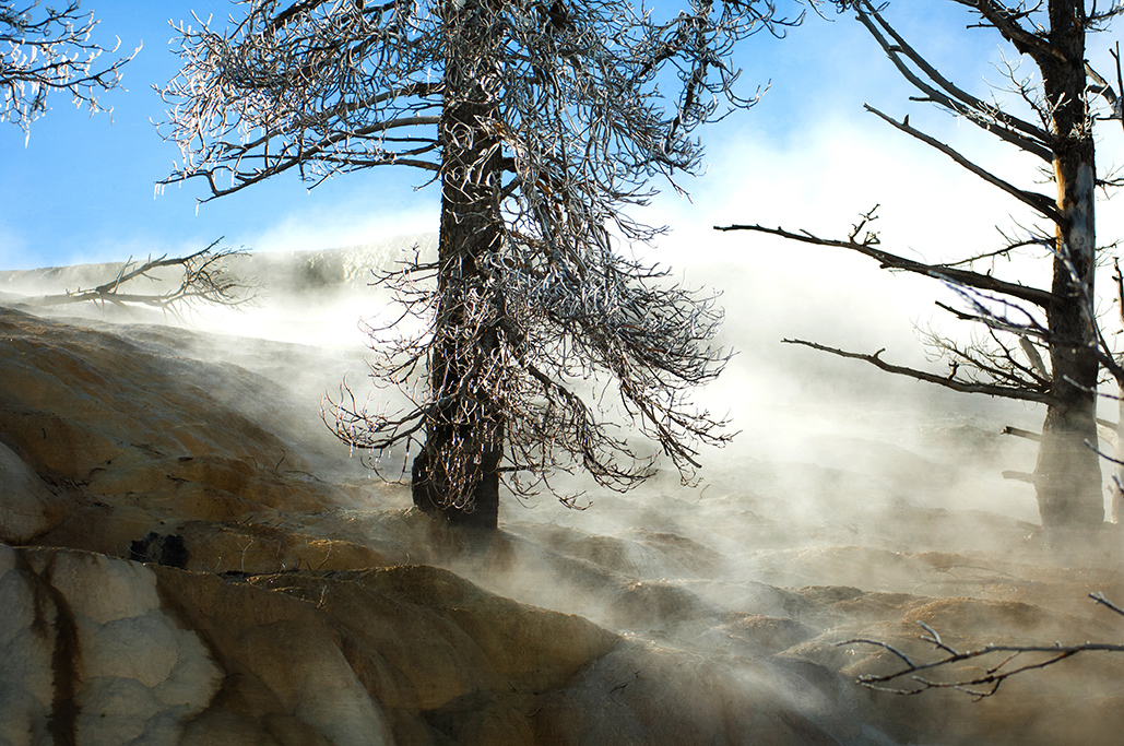 Yellowstone-234