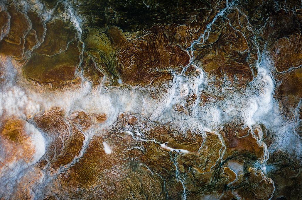 Yellowstone-266