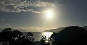 A Few Days In Cairns