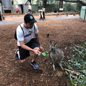 I even pet a kangaroo!!