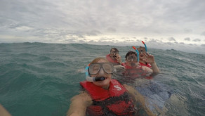 Just 3 Days in Cairns