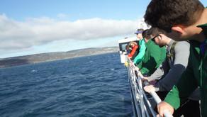 Kangaroo Island was amazing