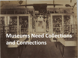 Museum collections and connections