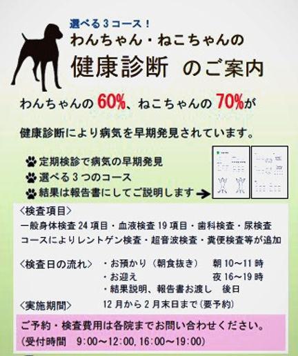 kenshin2020w1_edited_edited.jpg
