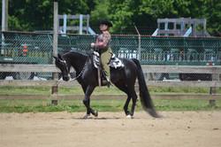 Butler County Horse Ranch