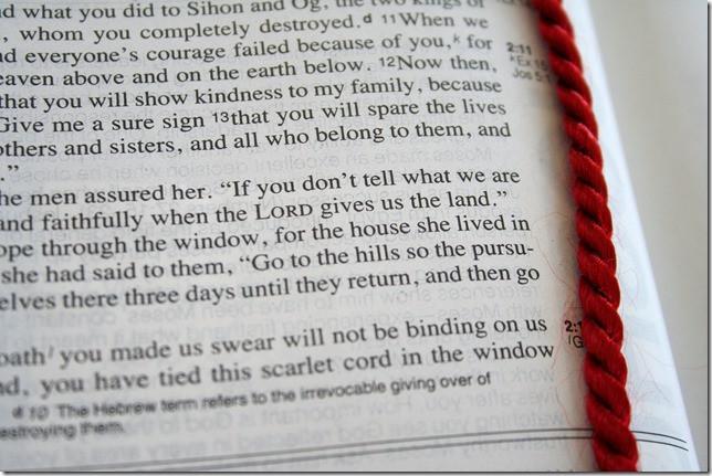 Scarlet rope.jpg