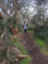 walking in bush.jpg