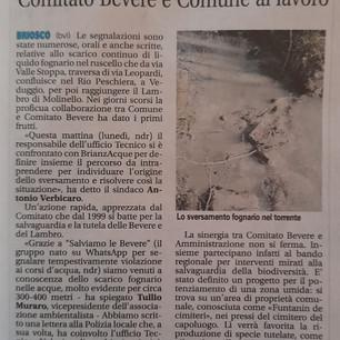 20210323_giornale di Carate.jpg