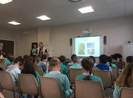 Educazione Ambientale - Scuole