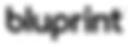 Bluprint logo