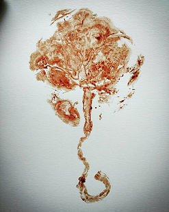 Natural blood placenta print on paper