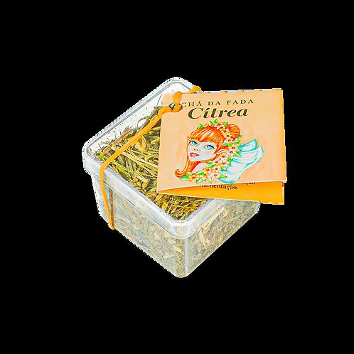 Chá da Fada Cítrea 21g Pocket
