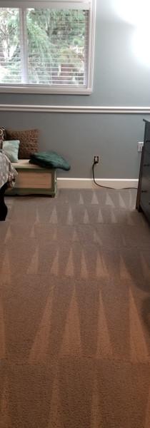 Vacuum Lines!