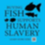 FISH 01.jpg