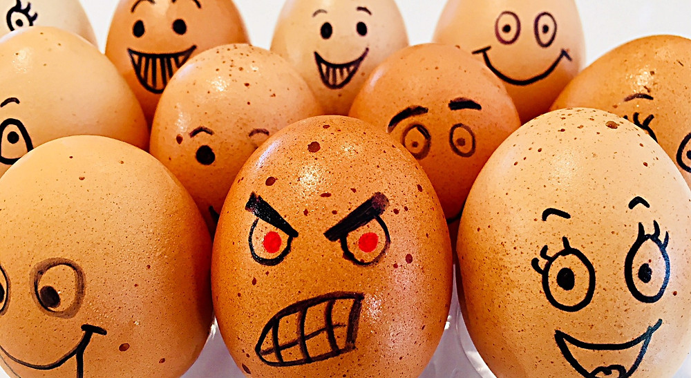 happy and angry eggs
