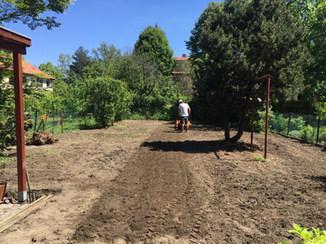 Zakládání trávníku