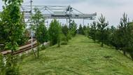 Česká Třebová - Revitalizace kontejnerového překladiště