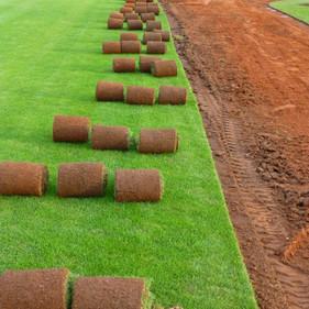 Kobercové trávníky
