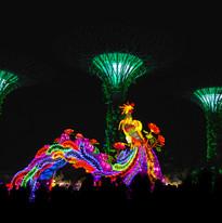 Singapore_IMG_7822.jpg