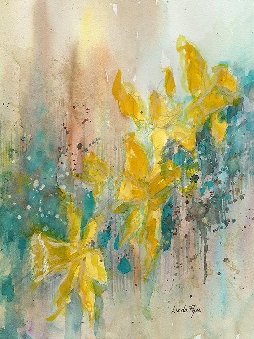 Daffodils in green