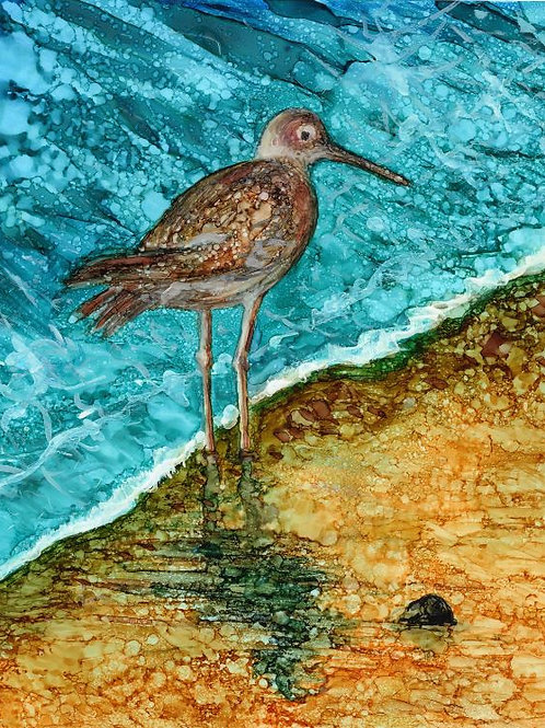 Sandpipper Print