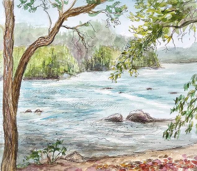 river rush