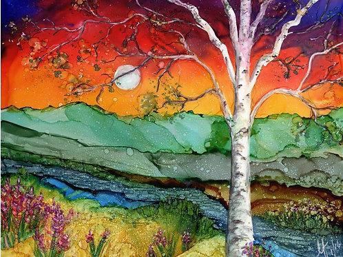 Rainbow  Birch Print