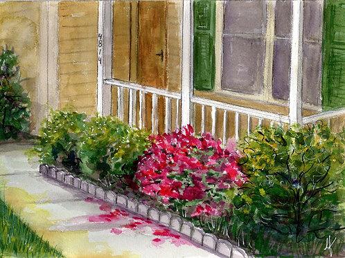 Azaleas along the front walkway