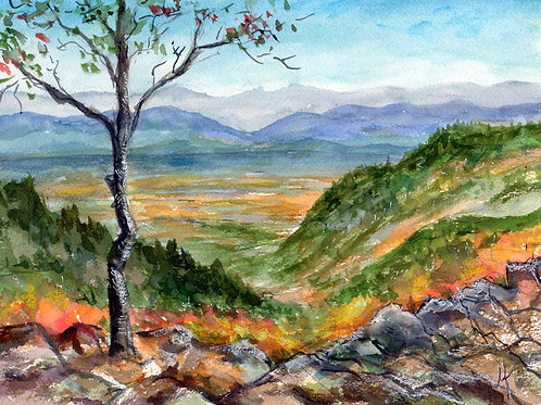 Shenandoah Valley- Original Painting