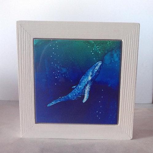 Whale Napkin Holder
