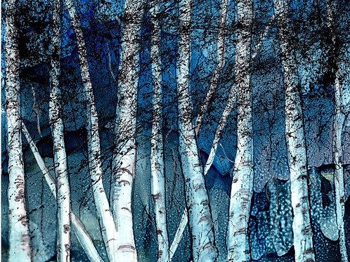 Winter Birch Print