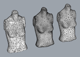 First 3D generated torsos with random meshes