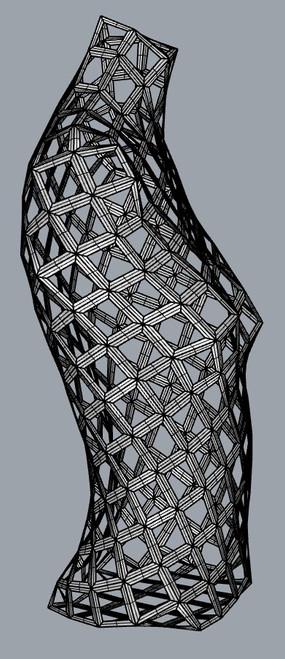 3D generated torso, open quad mesh