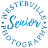 WSP_logo_master-2019-BLUE-640px.png