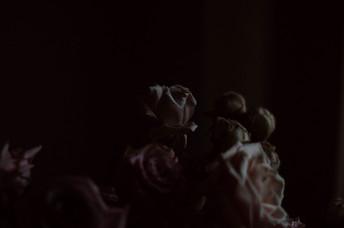 Pinkstilllife-36.jpg